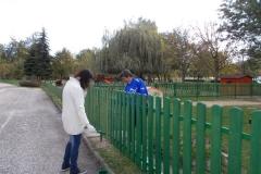 Kerítés festés szülői segítséggel (2)